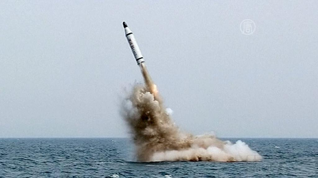 8378 - Северная Корея - реалии