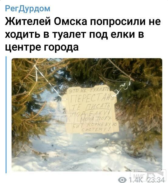 84293 - А в России чудеса!