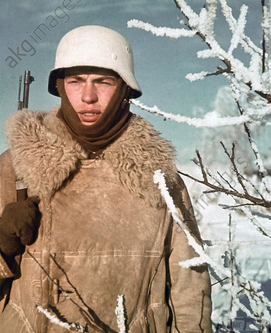 84432 - Военное фото 1941-1945 г.г. Восточный фронт.