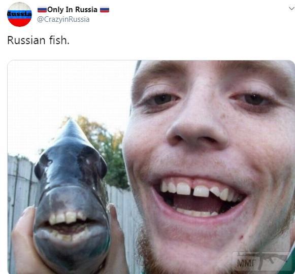 84643 - А в России чудеса!