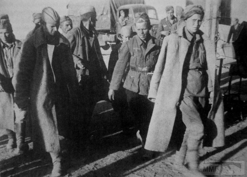 84795 - Женщины в плену.