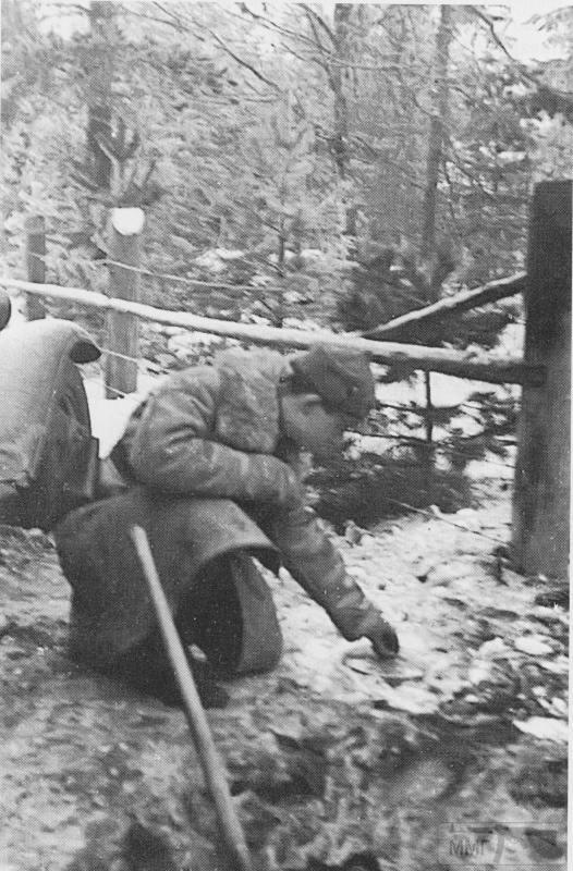 84883 - Зимняя война (1939-1940)