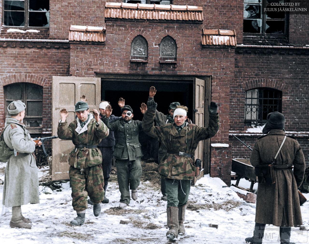 86149 - Военное фото 1941-1945 г.г. Восточный фронт.