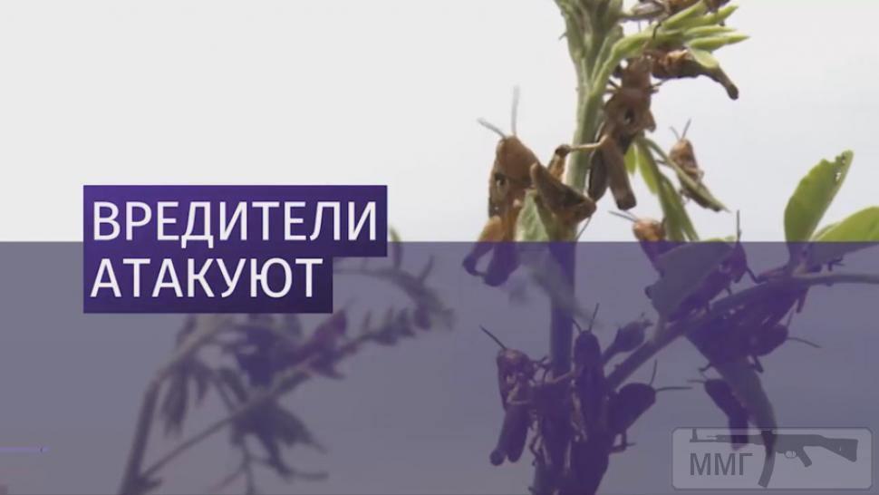 86179 - Украина - реалии!!!!!!!!