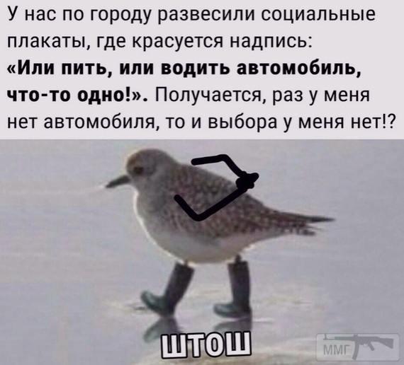 86683 - Пить или не пить? - пятничная алкогольная тема )))