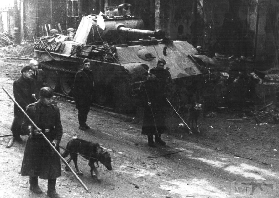 86834 - Achtung Panzer!