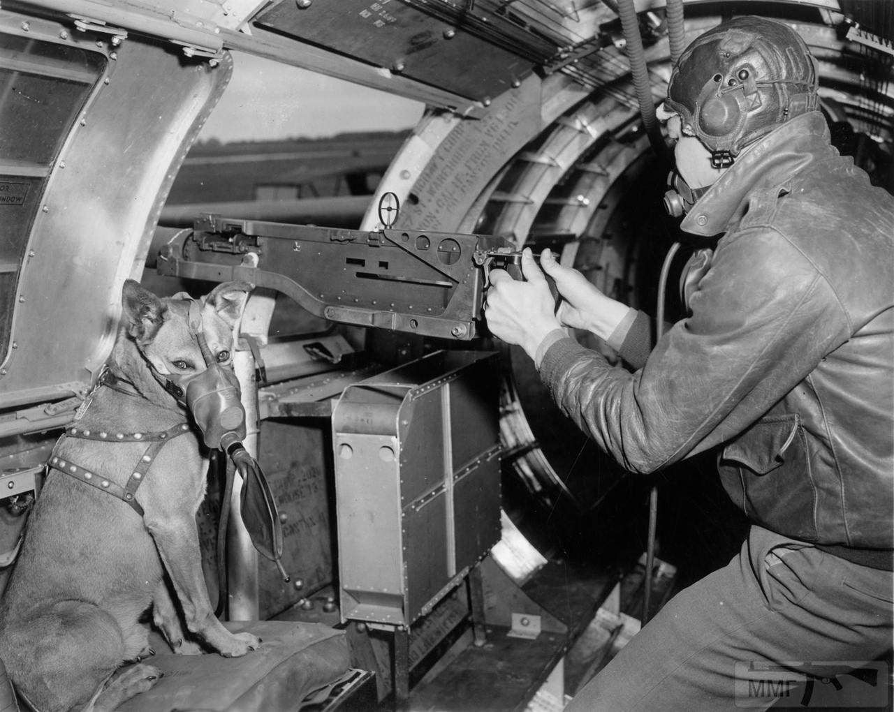 87650 - Стратегические бомбардировки Германии и Японии