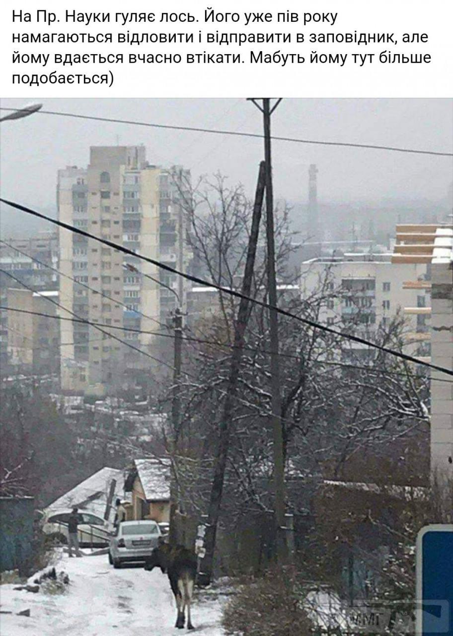 87721 - Мальовнича Україна.