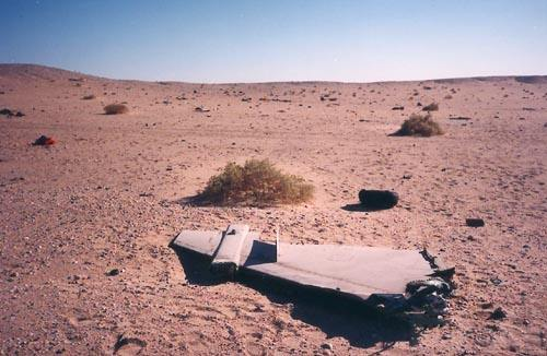 """8780 - Британские самолеты Jaguar GR-1A в операции """"Буря в пустыне"""" 1991 г."""