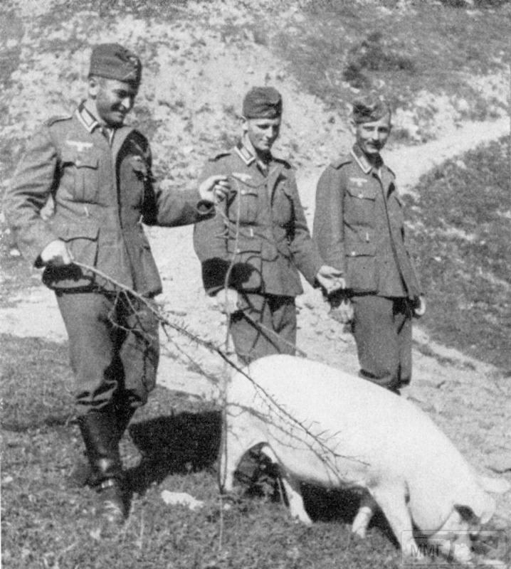 88193 - Раздел Польши и Польская кампания 1939 г.