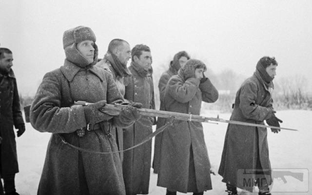 88275 - Военное фото 1941-1945 г.г. Восточный фронт.