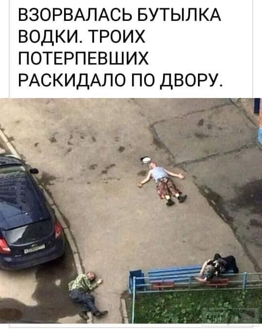 88551 - Пить или не пить? - пятничная алкогольная тема )))