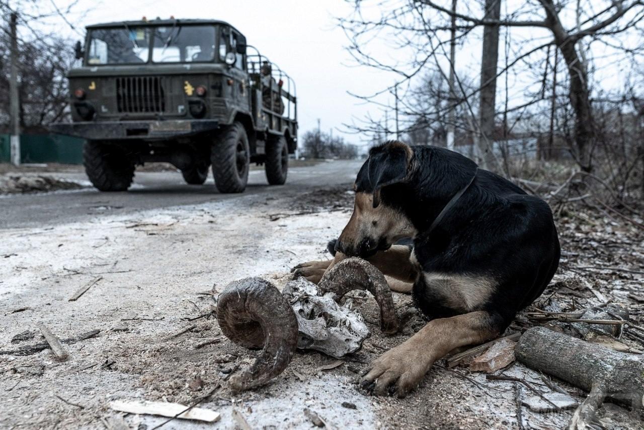 88944 - Фото- и видео-материалы последней войны 2014-...