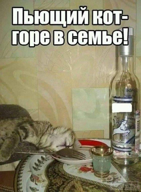 89080 - Пить или не пить? - пятничная алкогольная тема )))