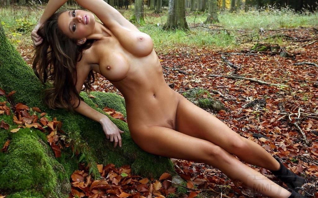 8977 - Красивые женщины