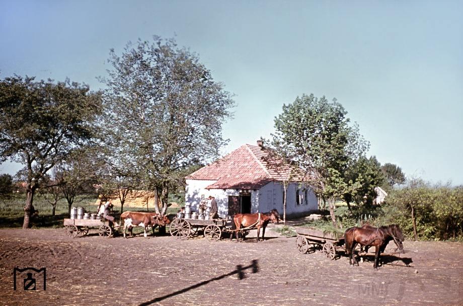 8984 - Оккупированная Украина в фотографиях