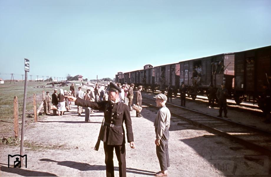 9000 - Оккупированная Украина в фотографиях
