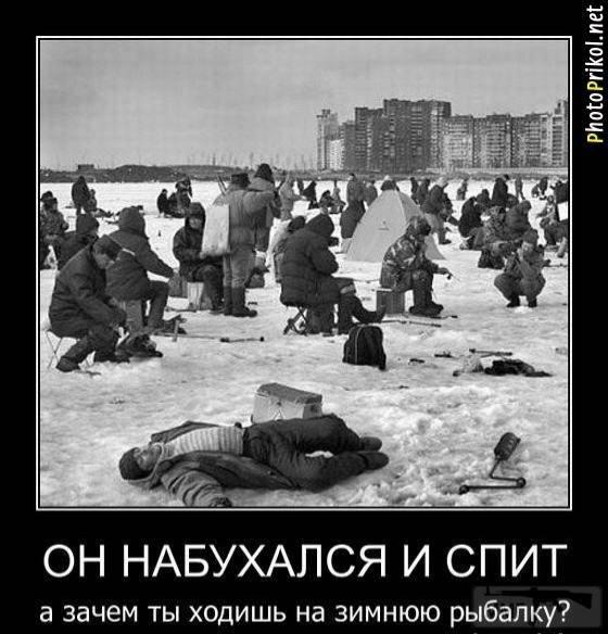 90614 - Пить или не пить? - пятничная алкогольная тема )))