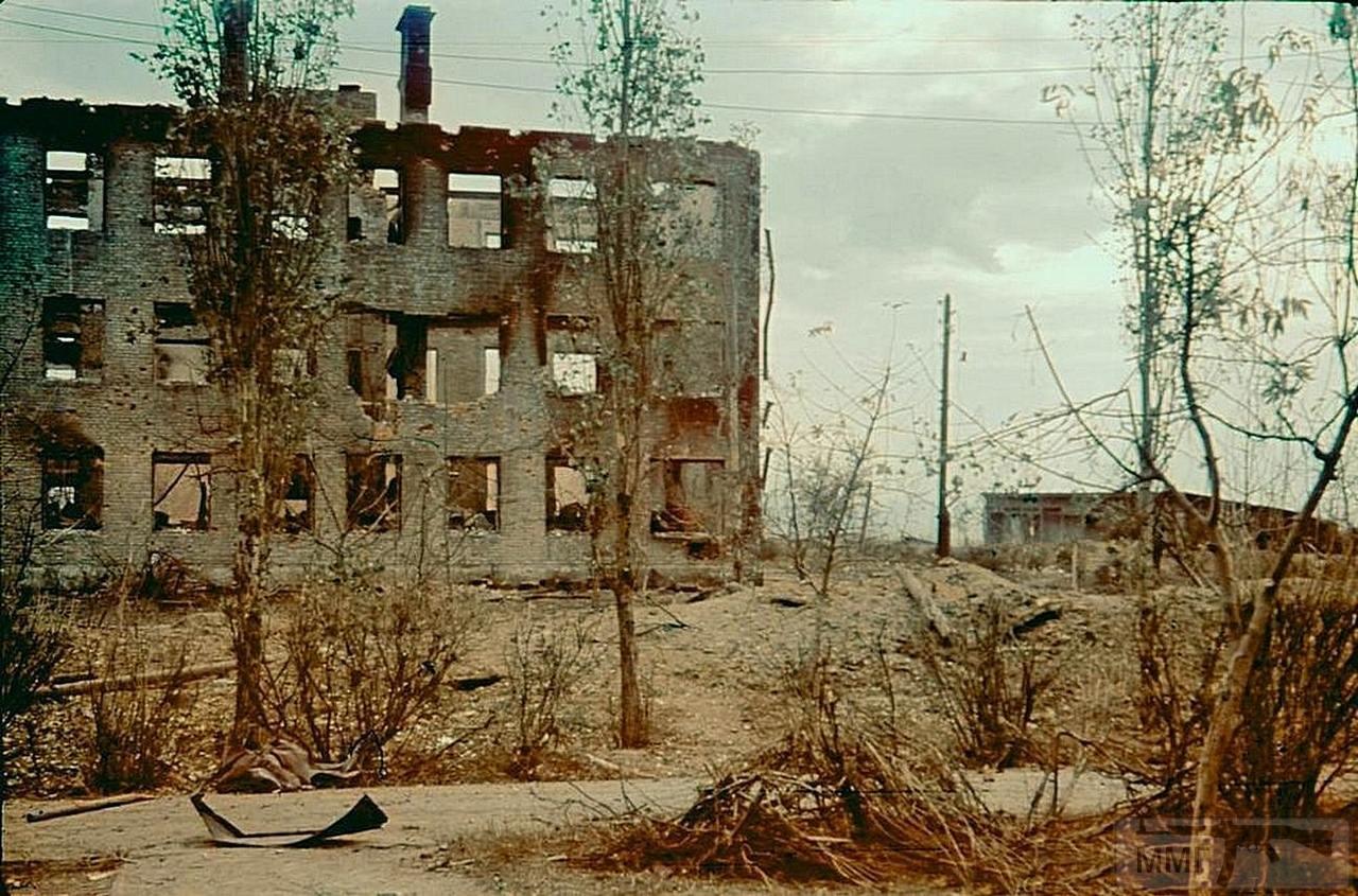 90718 - Военное фото 1941-1945 г.г. Восточный фронт.