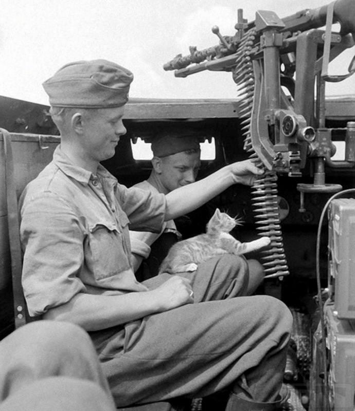 9076 - Все о пулемете MG-34 - история, модификации, клейма и т.д.