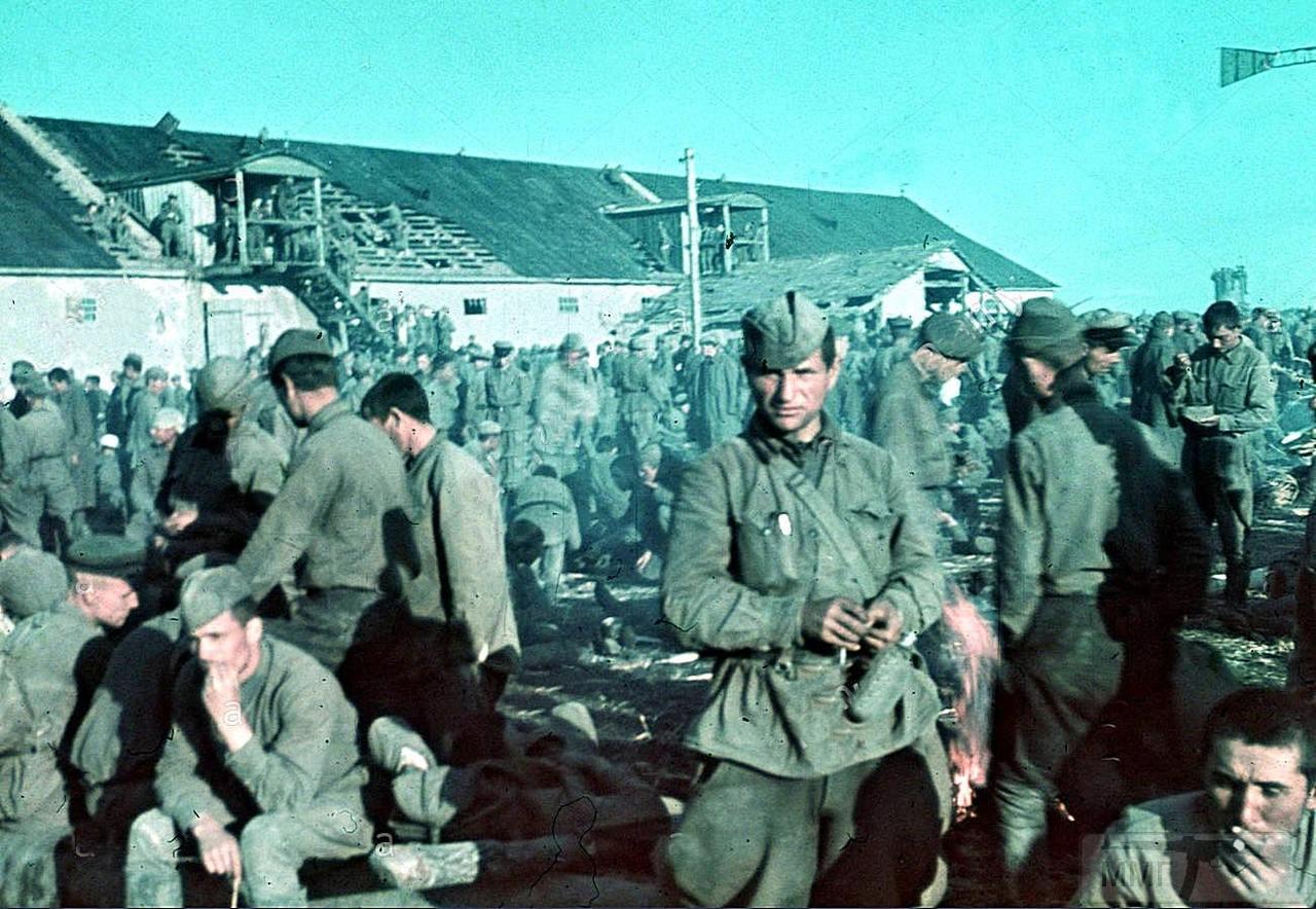 91529 - Лето 1941г,немецкие фото.