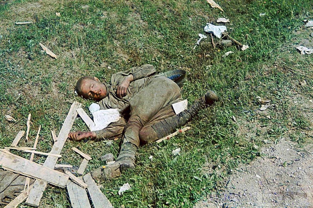 91542 - Лето 1941г,немецкие фото.