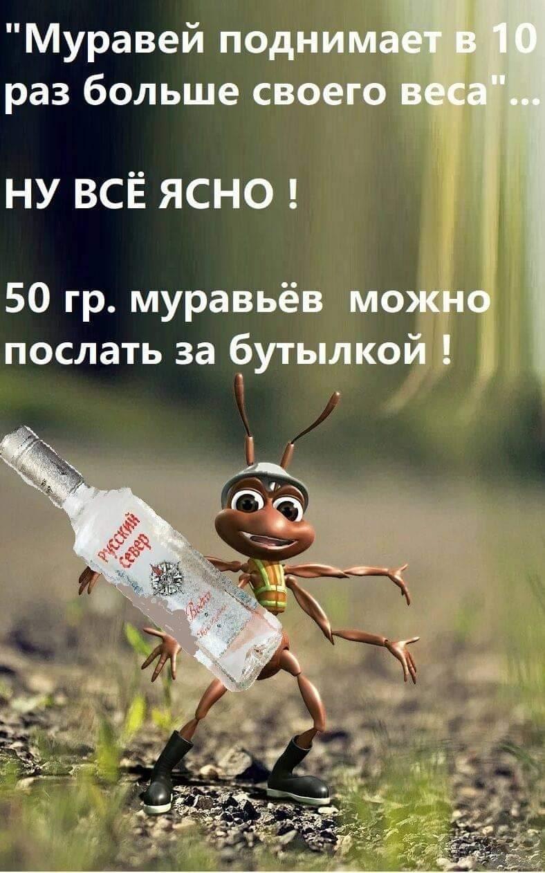 91800 - Пить или не пить? - пятничная алкогольная тема )))
