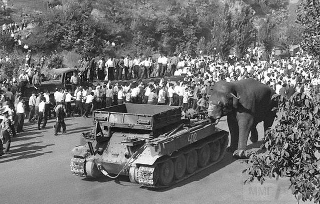 9241 - Послевоенное использование советской бронетехники WW2