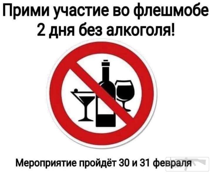 92448 - Пить или не пить? - пятничная алкогольная тема )))
