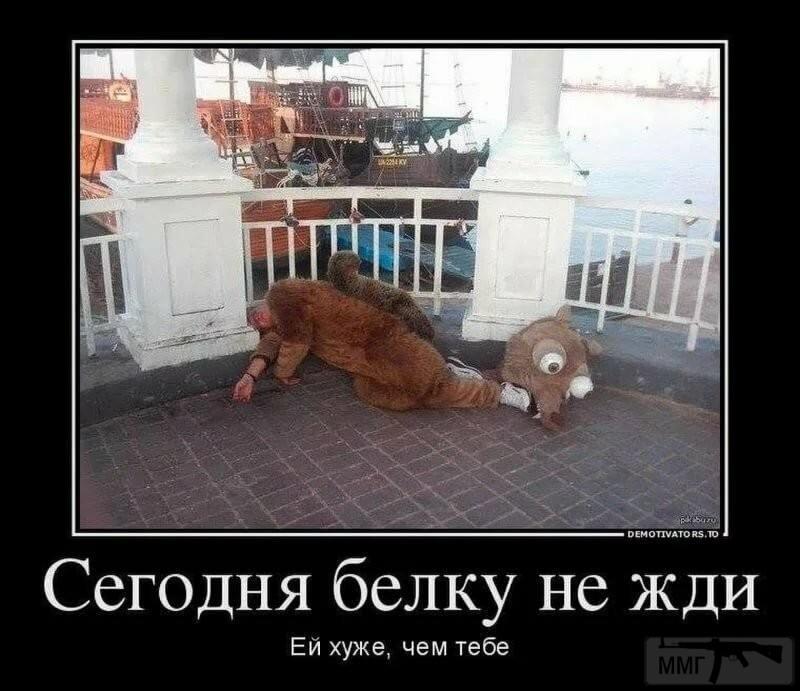 93884 - Пить или не пить? - пятничная алкогольная тема )))