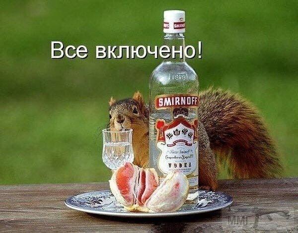 94809 - Пить или не пить? - пятничная алкогольная тема )))