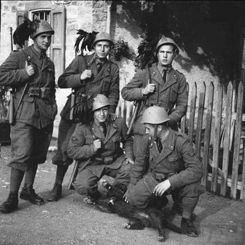 9509 - Союзники Германии на Восточном фронте