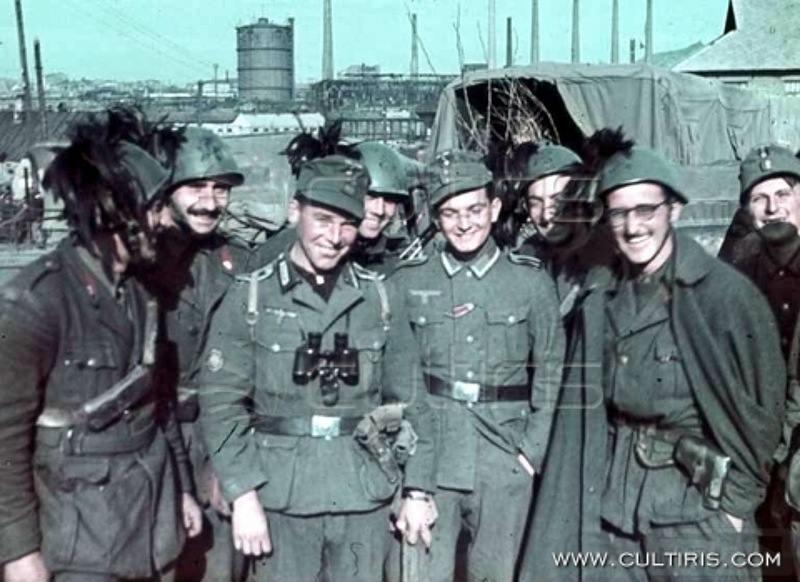 9510 - Союзники Германии на Восточном фронте
