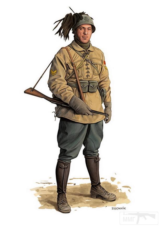 9512 - Союзники Германии на Восточном фронте