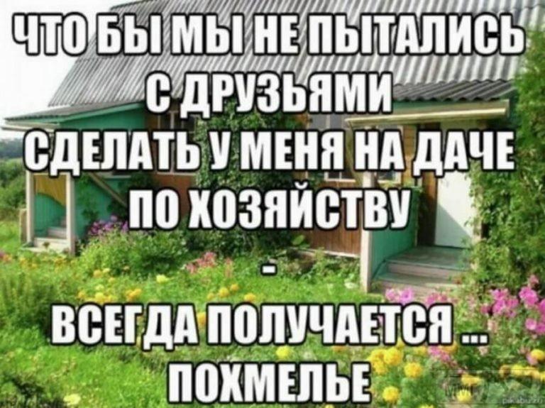 95292 - Пить или не пить? - пятничная алкогольная тема )))