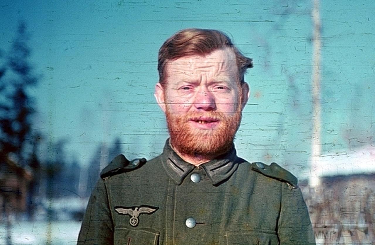 95360 - Военное фото 1941-1945 г.г. Восточный фронт.