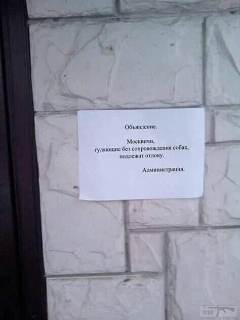 96908 - А в России чудеса!