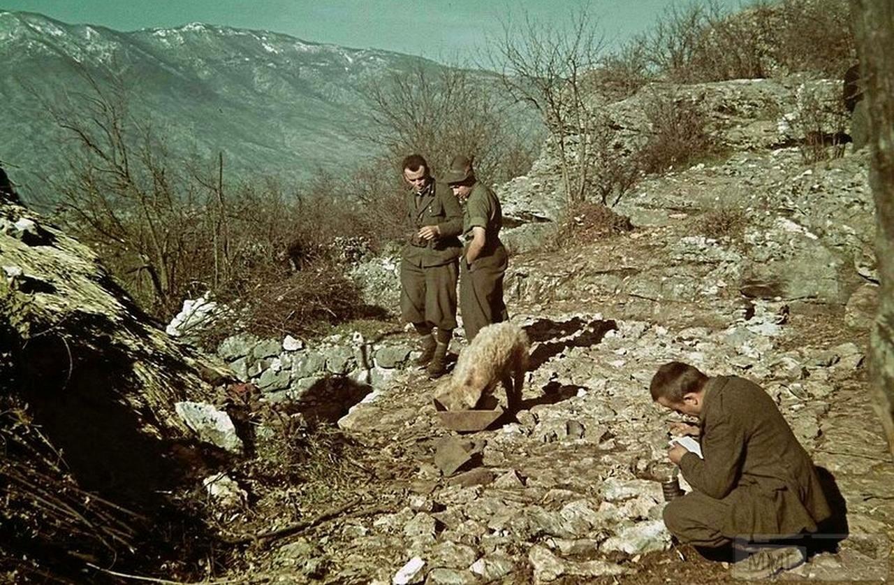97093 - Югославская хроника 1940 год.