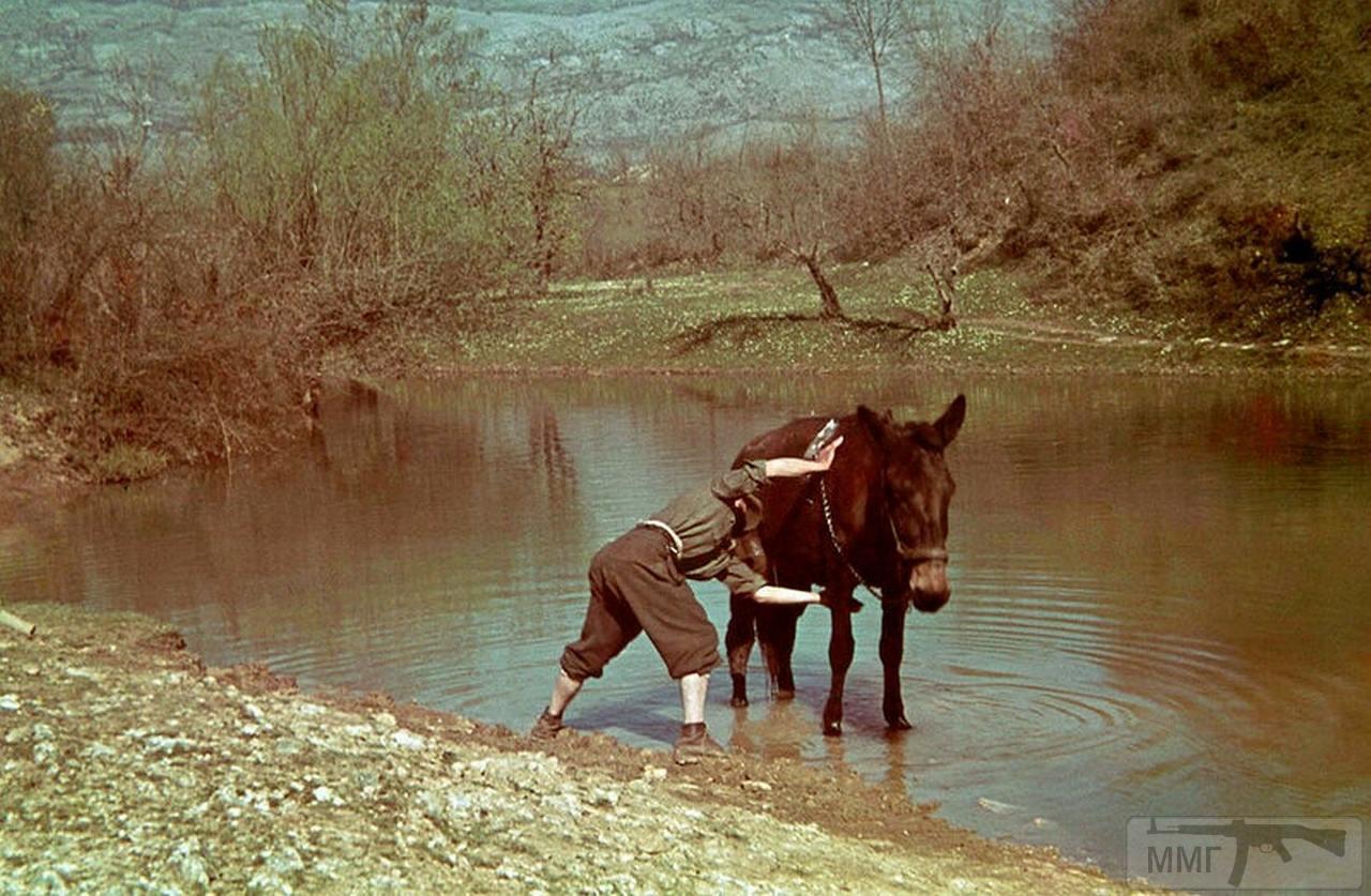 97094 - Югославская хроника 1940 год.