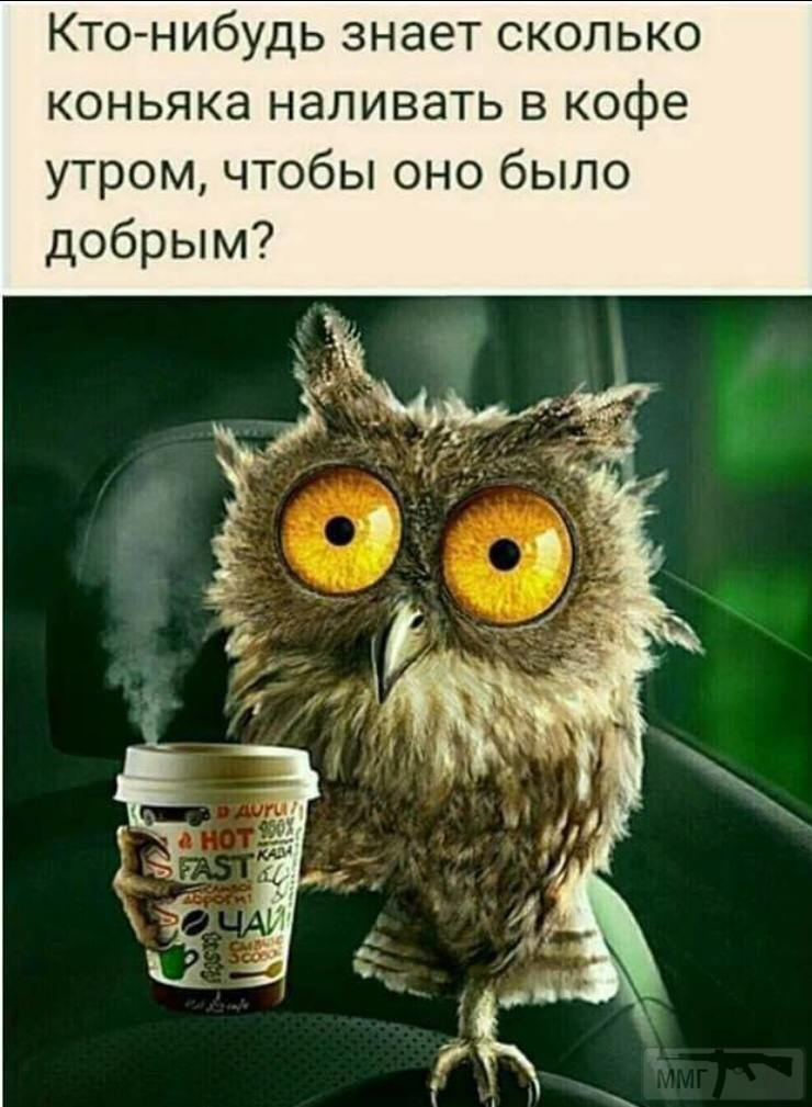97155 - Пить или не пить? - пятничная алкогольная тема )))