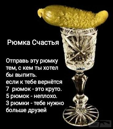 97233 - Пить или не пить? - пятничная алкогольная тема )))