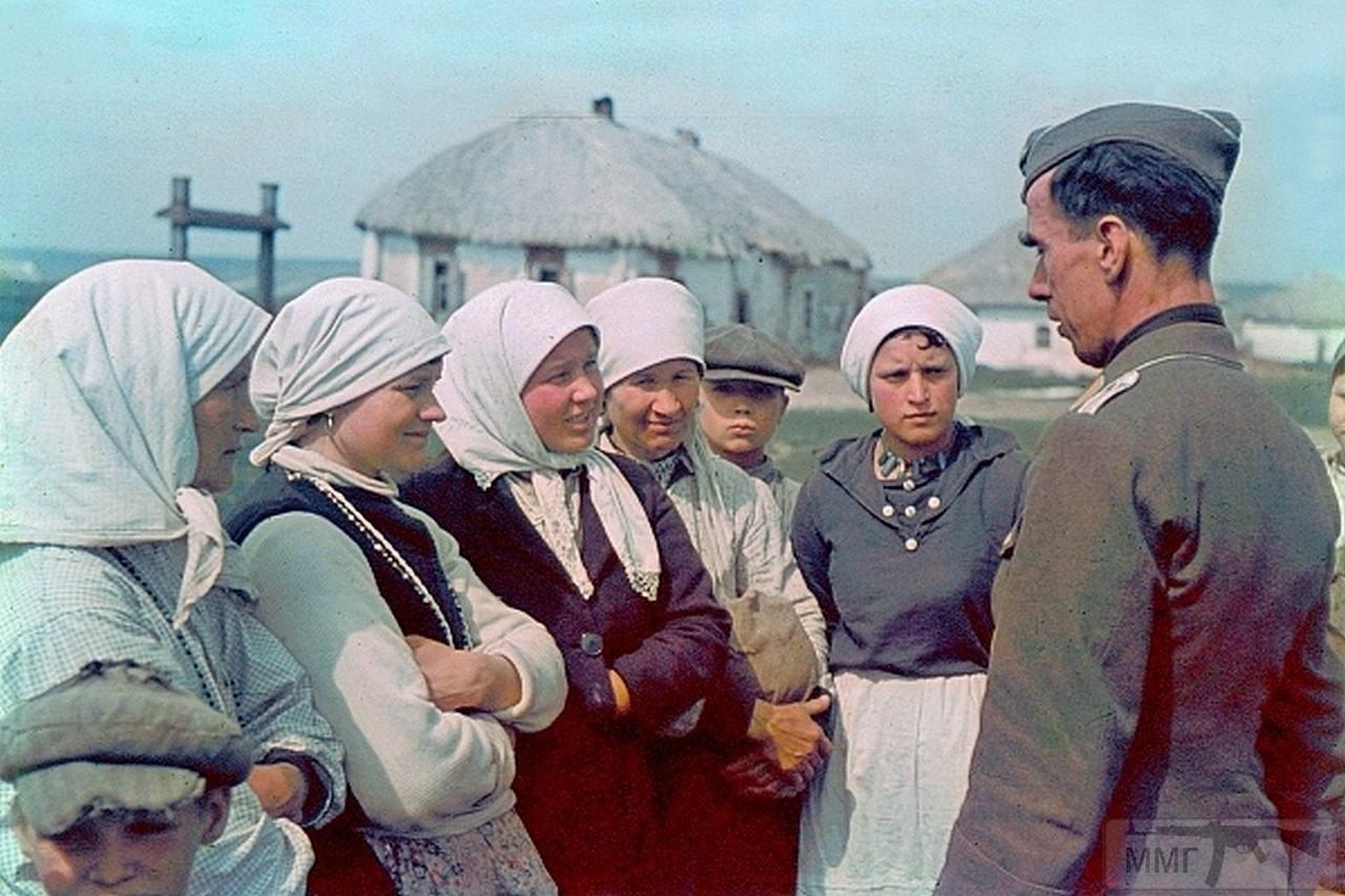 97691 - Военное фото 1941-1945 г.г. Восточный фронт.