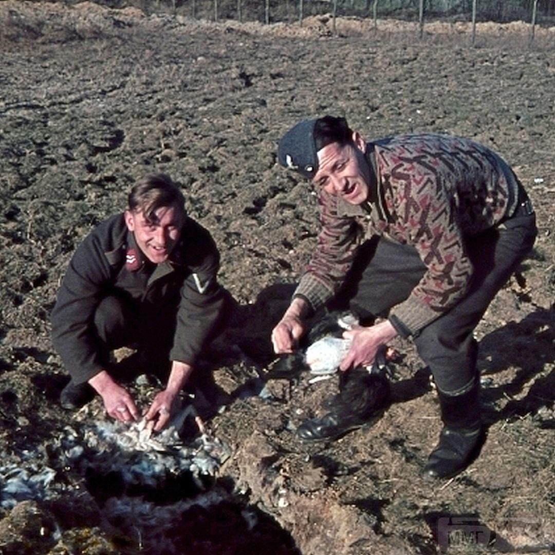 97818 - Военное фото 1939-1945 г.г. Западный фронт и Африка.