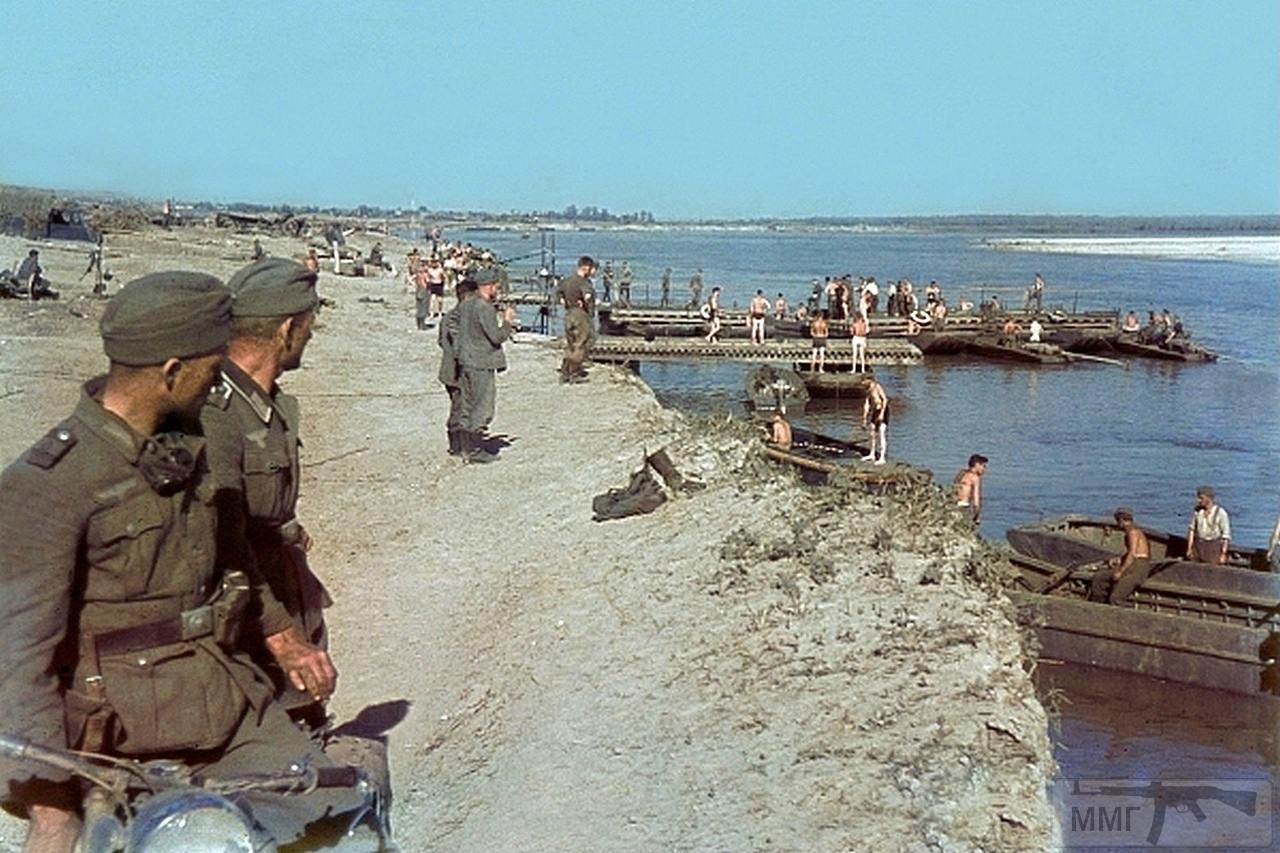 98040 - Военное фото 1941-1945 г.г. Восточный фронт.