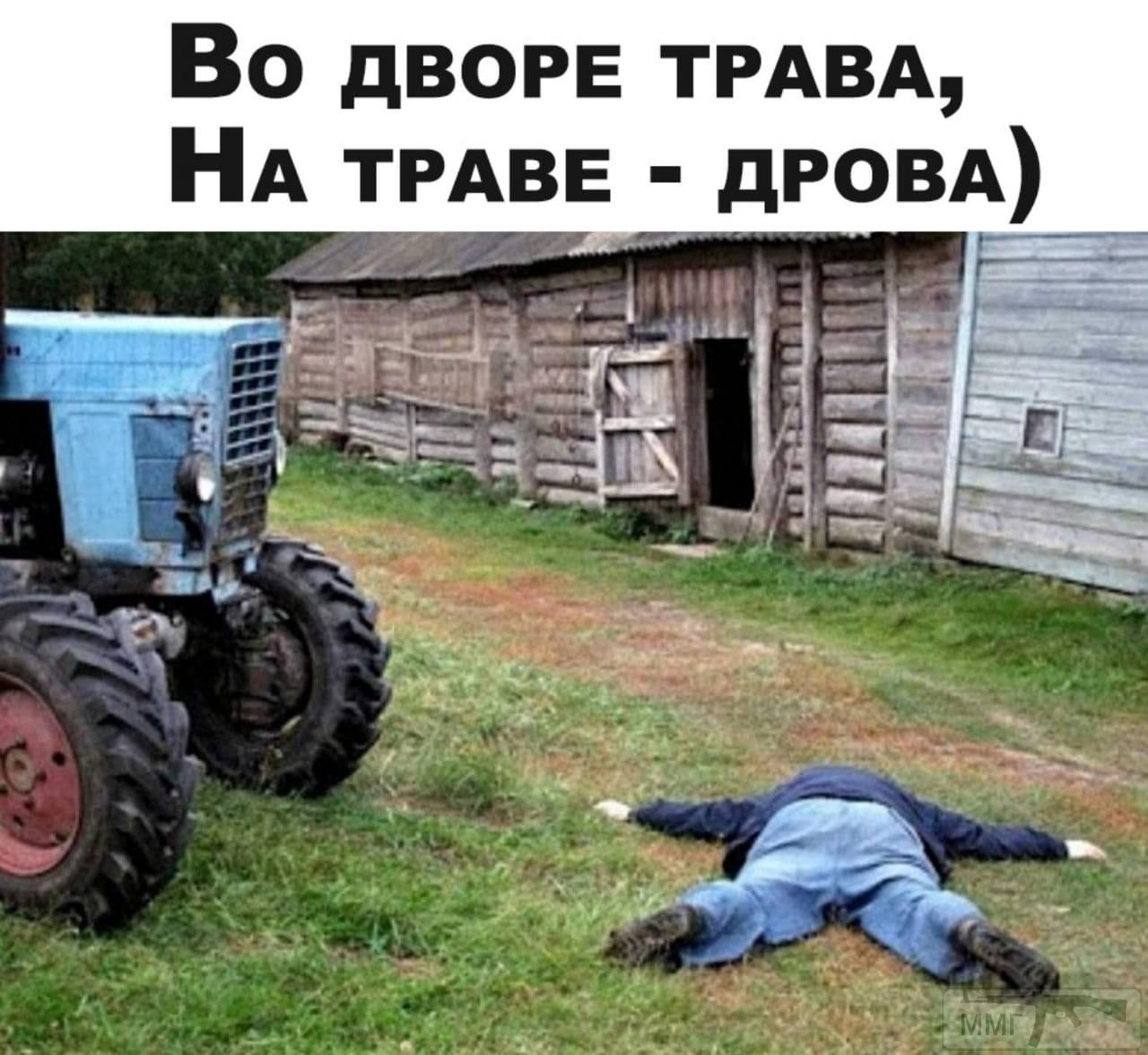 99634 - Пить или не пить? - пятничная алкогольная тема )))